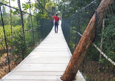 KECV Canopy Walk